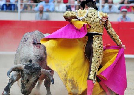 เทศกาลแปลกของคนสเปน ที่ไม่รู้ว่าจะสร้างความสนุกและความเจ็บปวดกับนักท่องเที่ยว