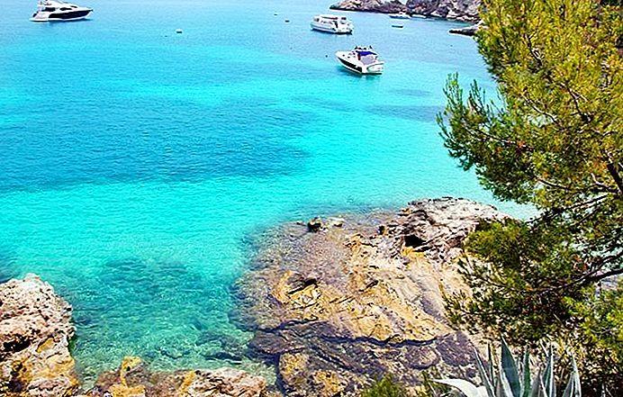 เกาะมายอก้า (Mallorca)